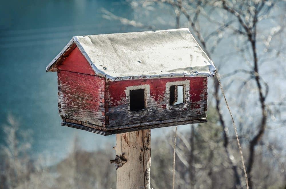 fabriquer un plan de nichoir et mangeoire pour oiseaux