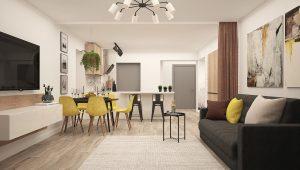 aménagement cuisine ouverte sur salon avec ilot
